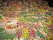 Тюльпаны оптом.хранение бесплатно